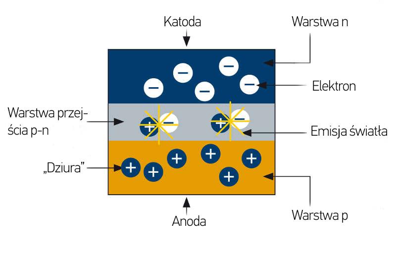 Podłączenie 3-kierunkowego włącznika światła